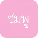 ผ้ายาง สีชมพู