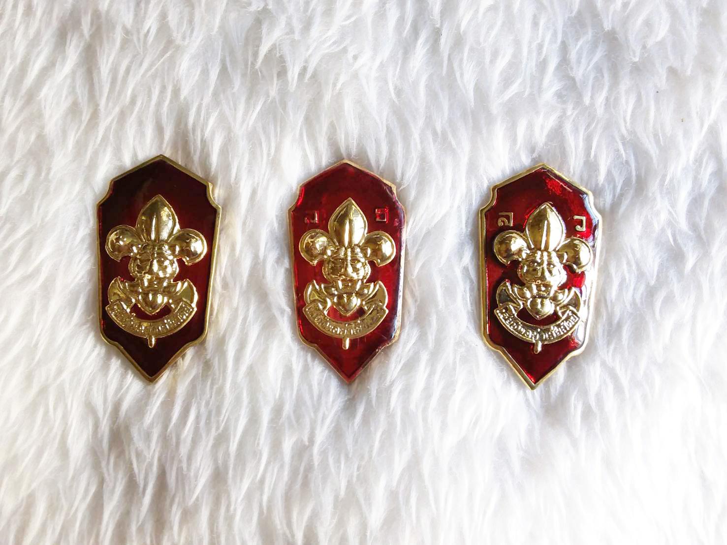 เครื่องหมายตำแหน่งผู้บังคับบัญชาลูกเสือ เหรียญเรซิ่น เข็มรองผู้กำกับลูกเสือ