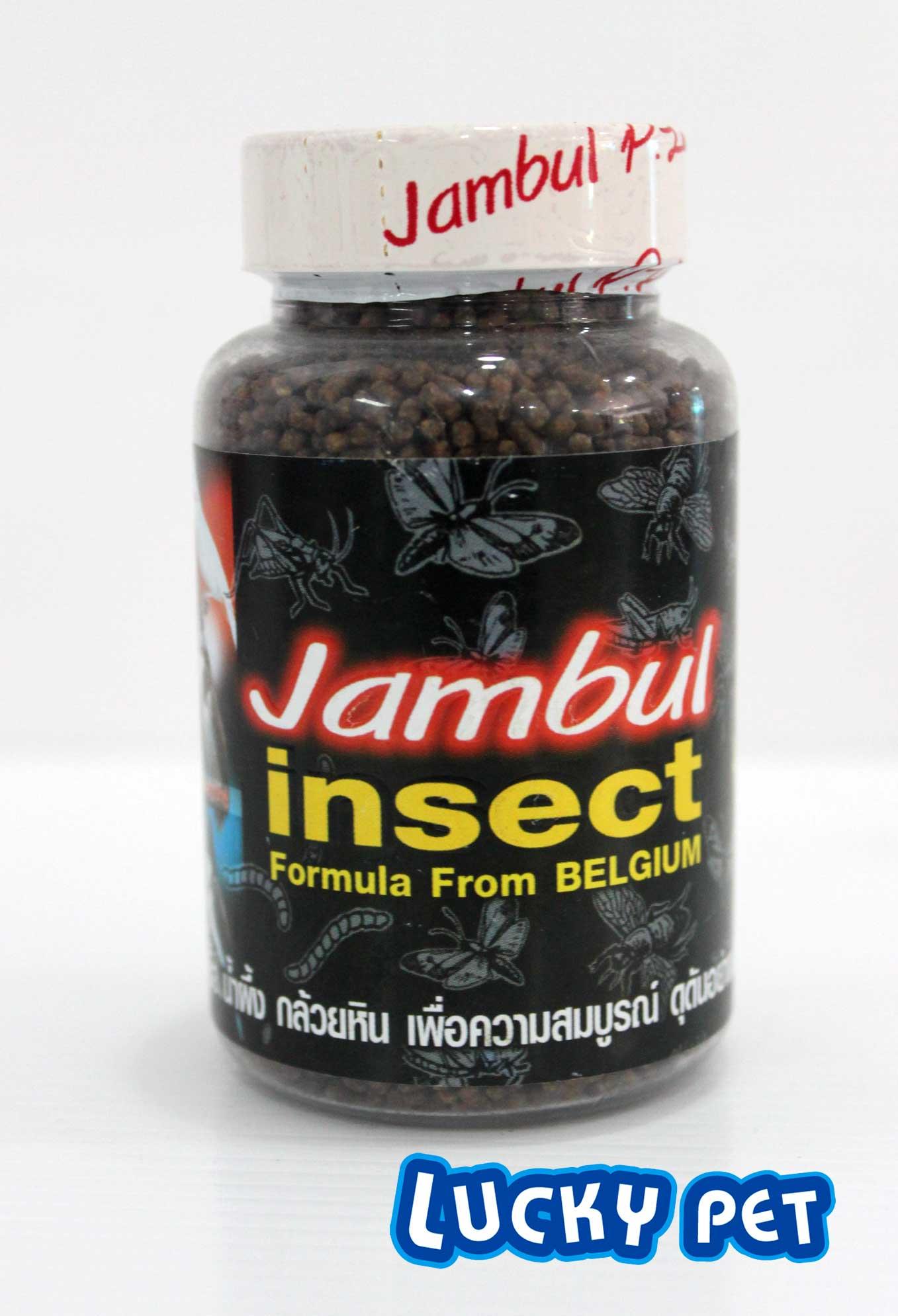 จัมบูล อินเซ็กผสมแมลงต่างๆพิเศษ!!!!สั่งซื้อ1โหลในราคาโหลละ 960 บาท