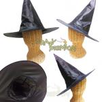 หมวกพ่อมดแม่มด - Harry Potter witch Hat