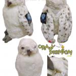 หุ่นมือเฮ็ดวิก Hedwig