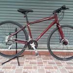 Schwinn Sport Hybrid