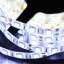 ไฟ LED แบบเส้น SMD ดวงใหญ่ 60 ดวง/เมตร ยาว 5 เมตร thumbnail 5