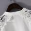 เสื้อแขนยาวสีขาวแต่งลูกไม้ thumbnail 5