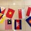 ธงอาเซียนขนาดเล็ก ธงราวอาเซียน รวม 11 ผืน thumbnail 1