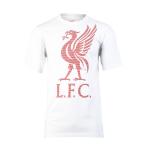 เสื้อลิเวอร์พูล ลิเวอร์ทีเชิ้ต ของแท้ 100% Liverpool FC Mens Liver Tee