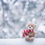 กางเกงในชายกับฤดูหนาว