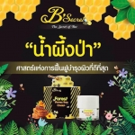 B'secret ครีมน้ำผึ้งป่า Forest Honey Bee Cream หน้าเงา ขาวใส ปลีก 290 บ./ ส่ง 250 บ.
