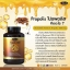 Auswelllife Propolis โพรโพลิส รักษาสิว แก้ภูมิแพ้ 60 แคปซูล thumbnail 1
